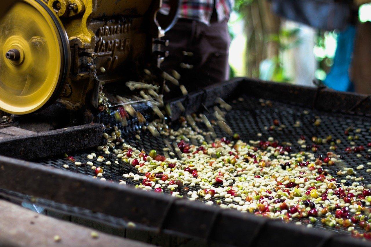 Tradičné spôsoby spracovania kávy